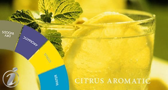 حمضيات أروماتك Citrus Aromatic