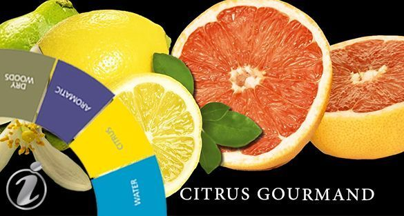 حمضيات غورماند Citrus Gourmand