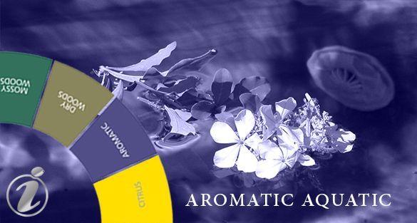 أروماتك مائي Aromatic Aquatic