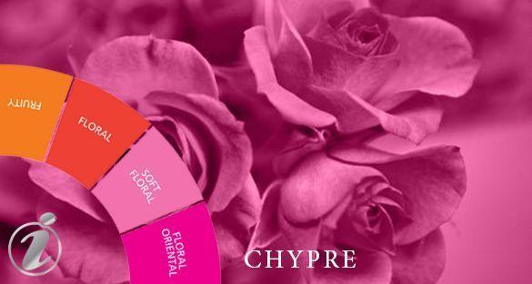تشيبر Chypre