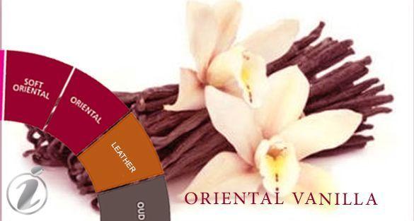 شرقي فانيلا Oriental Vanilla