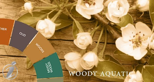 خشبي أروماتك Woody Aromatic