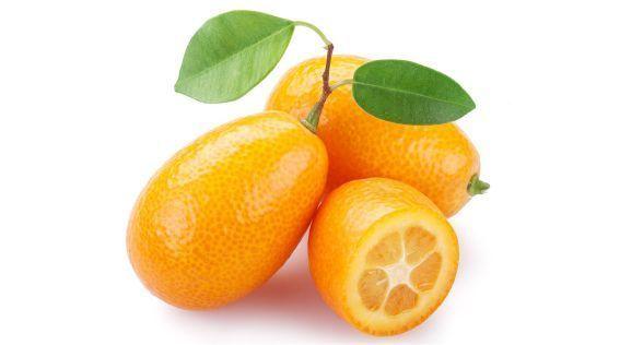 Golden oranges البرتقال الذهبي