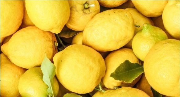 الليمون الايطالي Italian Lemon
