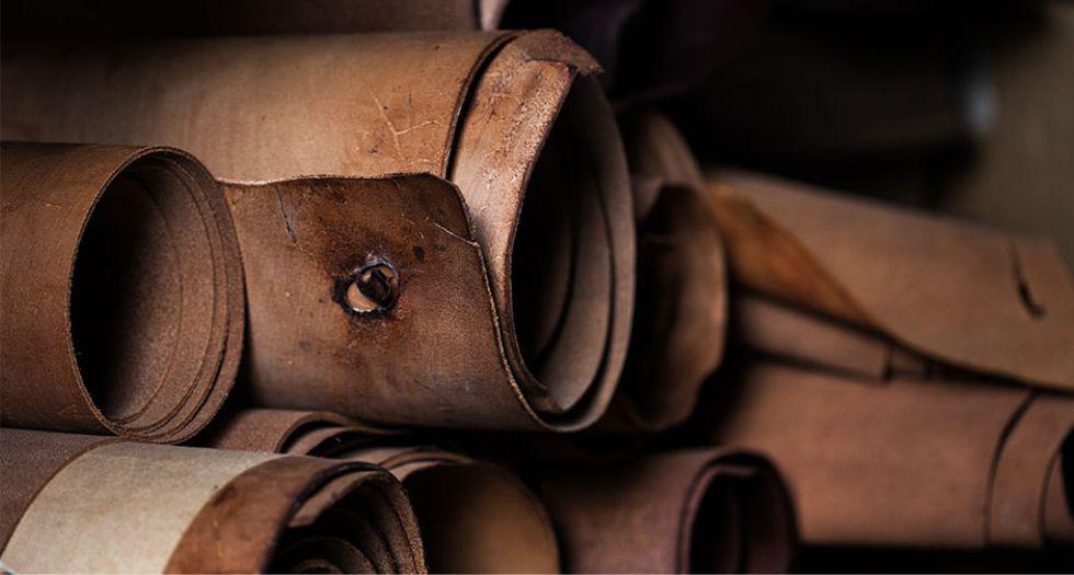 الجلد leather