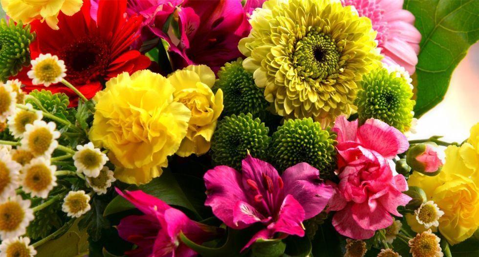 ملاحظات زهرية Floral notes
