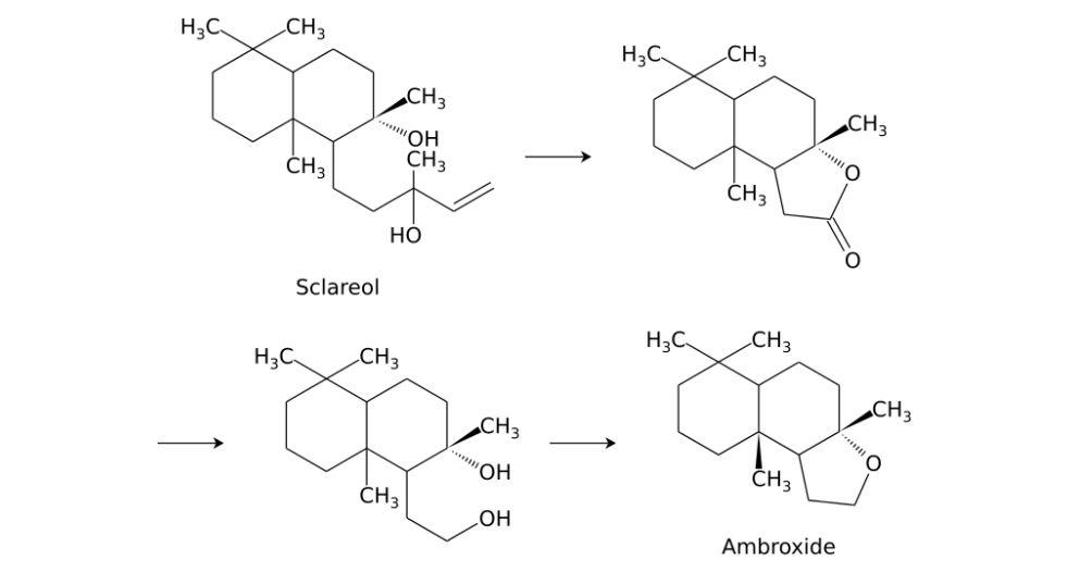 امبروكسان Ambroxan or (Cetalox)