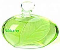 Nature-عطر إيف روشيه ناتشر