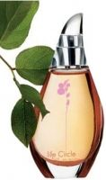 Life Circle Fruit-عطر لايف سيركل فروت أوريفليم