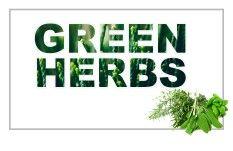 الأعشاب-العطرية-والنباتات-الخضراء